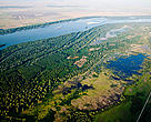 Belene Island, Bulgaria. Former floodplain forests and wetlands are being restored in the Bulgarian part of the Danube River. The marsh has been reconnected with the river, creating rich feeding, breeding and spawning grounds for fish, flora and fauna. 