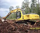 APP associated company opens a Senepis peat forests.