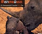 ปัจจุบันแรดชวาได้ถูกระบุไว้อย่างชัดเจนเเล้วว่าเป็นสัตว์ที่สูญพันธุ์ไปจากธรรมชาติไปแล้วในประเทศไทย