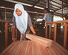 Meranti timber harvested from an FSC-certified forest in Malaysia being used to make furniture for the European market.