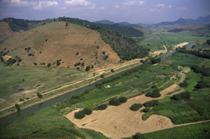 São João  River Basin Management project,  part of one of the WWF Freshwater projects sponsored by ... / ©: WWF-Canon / Edward PARKER
