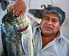 Paita, Piura. Perú.