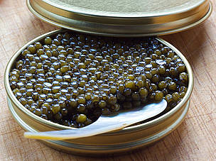 Sturgeon are harvested for their roe which is turned into caviar.