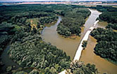 Arms of the Danube River with construction road, Slovakia. / ©: WWF-Canon / Paul GLENDELL