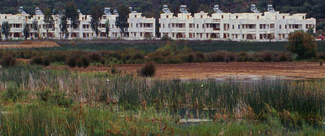 Tourist resort on a very fertile swamp. Fethiy, Turkey  rel=