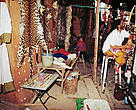 Display of large cat and snake skins and ivory for sale at a stall in Tachilek market, Burma, across the border from Thailand.
