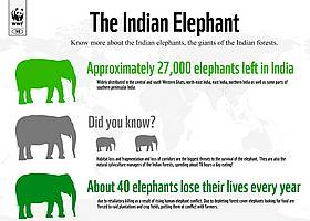  / &copy;: WWF-India