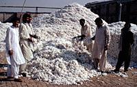 Cotton factory, Faisalabad, Pakistan. / &copy;: WWF-Canon / Mauri RAUTKARI
