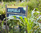 A display about biofuels at the center of Technology at Machynlleth, UK