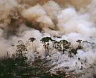 Many fires in the Amazon are often started to clear land for cattle and other development activities. Aerial shot of a forest fire in Acre State, Brazil.