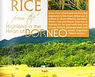 Adan Rice Brochure, Heart of Borneo, HoB