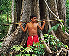 The Yanomami people of Roraima Province in Brazil are losing their homes as the Amazon forests disappear.&lt;BR&gt;