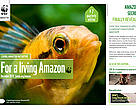 Cover Living Amazon Initiative Newsletter -  7