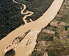 Deforestation along the Rio Branco River in Brazil's Amazon.