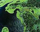 Satellite view of the Amazon.