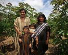 Amazonia Viva, Puerto Esperanza, Ucayali