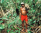 Villager with Cipo collected from forest for hand brushes, Jau National Park, Amazonas, Brazil.