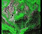 The Araca River in Brazil's Amazon, taken from a Landsat satellite. 