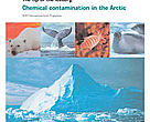 The tip of the iceberg: Chemical contamination in the Arctic