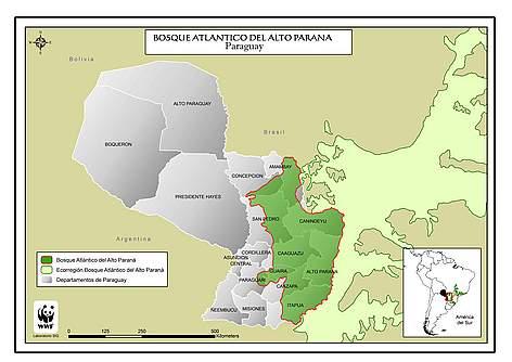 Mapa del Bosque Atlántico del Alto Paraná / ©: Andrea Garay / WWF Paraguay