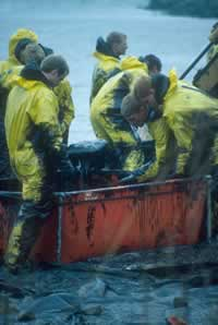 Baltic oil disaster in 2001. / &copy;: Alfred Schumm