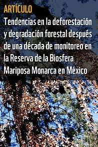 Tendencias en la deforestación y degradación forestal después de una década de monitoreo en la ... / ©: WWF