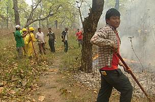 Youths protect Barandabhar forest against fire