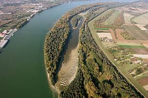 Liberty Island on the Danube River in Hungary before a restoration project by WWF and partners