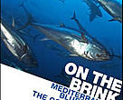 Mediterranean bluefin tuna - the consequences of collapse