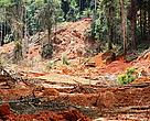 February 2012, the protected nature of Brownsberg Park is brutely destroyed by gold mining activities