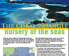 Coral Triangle Brochure Cover