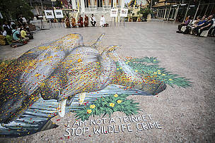 "Giant chalk drawing of an elephant designed by artist Remko van Schaik  with messages in English and Thai saying ""I am not a trinket"" and ""Ivory belongs to elephants."""