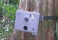 Camera trap.