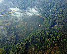 Aerial view of small oil palm plantation in the rainforest of Southeastern Cameroon. Forests in the green heart of Africa are vulnerable targets for expansion, as palm oil companies look beyond Indonesia and Malaysia for new land to expand palm oil production