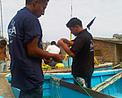 Pescadores en Ecuador