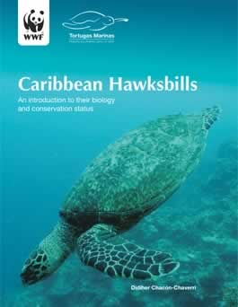 Caribbean Hawksbills - Biology and Conservation Status. / ©: WWF