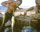 WWF project worker weighing fish catch, Mafia Island, Tanzania.