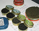 Caviar – the processed, salted roe of certain fish species, most notably sturgeon – is commercially marketed worldwide as a delicacy.