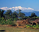 Located in the shadow of the Himalayas, the Terai Arc is home to a wide range of wildlife, including rhinos and tigers, as well as 6 million people.
