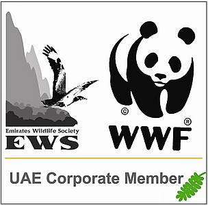 / ©: EWS-WWF