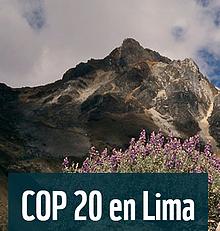 COP 20 Lima / ©: WWF