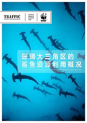 Coral Triangle Shark Report Cover
