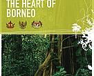 Financing the Heart of Borneo