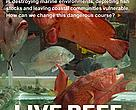 Cover of WWF Coral Triangle programme Live Reef Food Fish Trade strategy