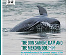 The Don Sahong dam and the Mekong dolphin - briedfing cover