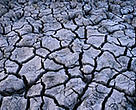Persistent hot weather following months of low rainfall has resulted in drought in many parts of Europe.