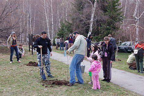 Volunteers planting Christmas trees in pots, Vitosha Nature Park, Bulgaria, 11 April 2009 / ©: WWF/Konstantin Ivanov