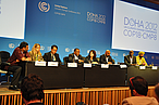Big 6 NGO press conference, COP18, Doha, Qatar WWF