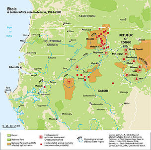 The spread of ebola across Central Africa, 1994-2003. Ebola epidemic outbreaks across the Congo ... / &copy;: UNEP/GRID-Arendal. Sources: Lahm, S., A., Morbidity and Mortality of Wild Animals in Relation to Outbreaks of Ebola Haemorrhagic Fever in Gabon, 19942003, Elsevier, 2006; Bermejo, M., Ebola Outbreak Killed 5000 Gorillas, Science, 2006; Global Forest Watch.