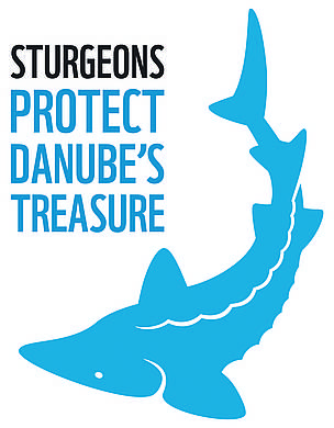 WWF Life+ Danube sturgeons project logo